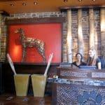 Alfresco Dining in San Diego