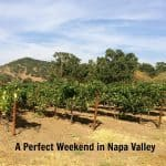 Relaxed Weekend in Napa Valley