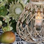 Unforgettable Tropical Boho Chic Party!