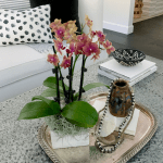 Palm Desert, Scottsdale, San Diego, Newport Beach/Lido Village THE HOT SPOTS