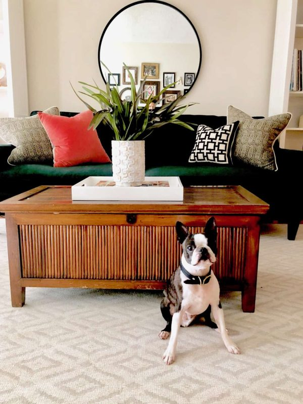 Chief in modern boho style apartment with diamond Karastan rug
