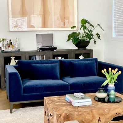Living Room Designed By Mary Ann Pickett