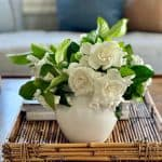 Gorgeous Flower Arrangements That Make You Feel Special