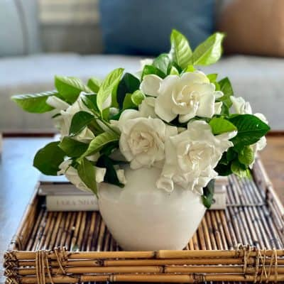 white gardenia flower arrnagement on coffee table