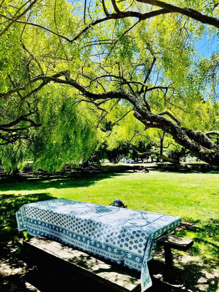 Blue and White Picnic table Cloth